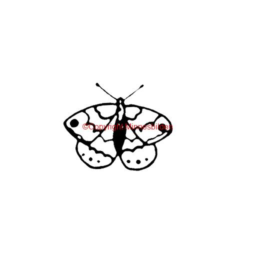 Symbol 213