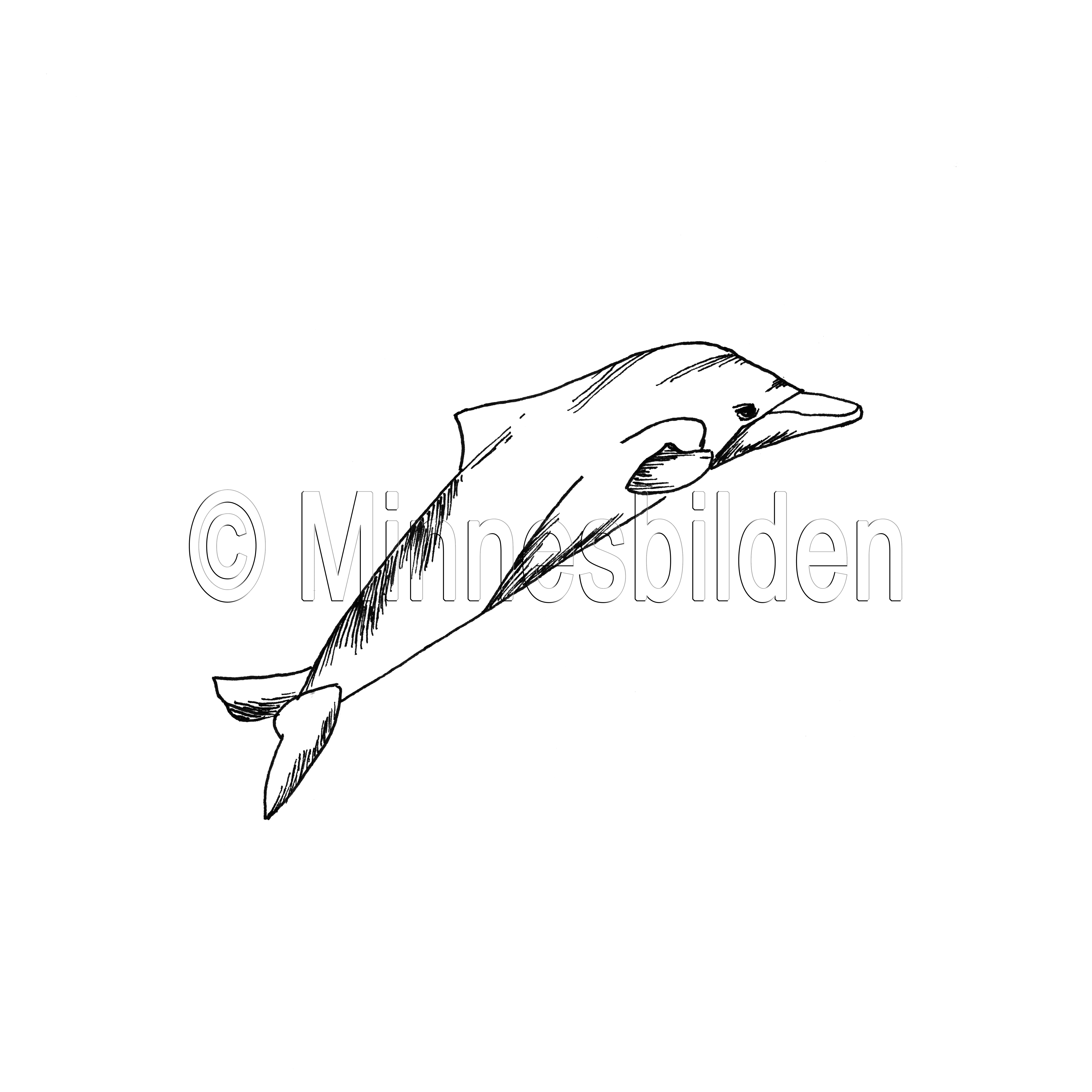Symbol 293