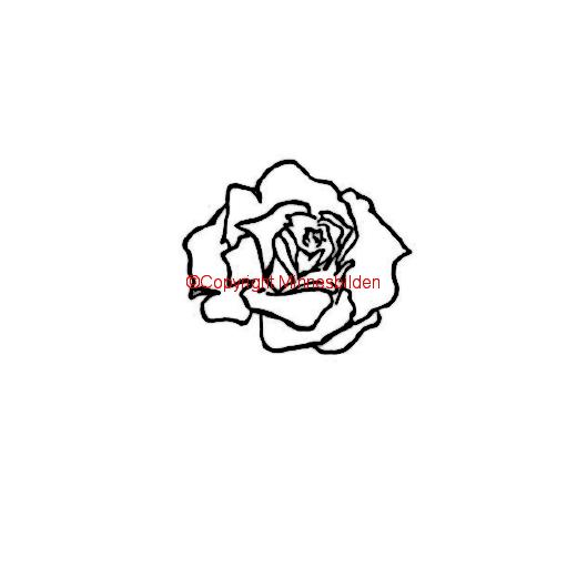 Symbol 169