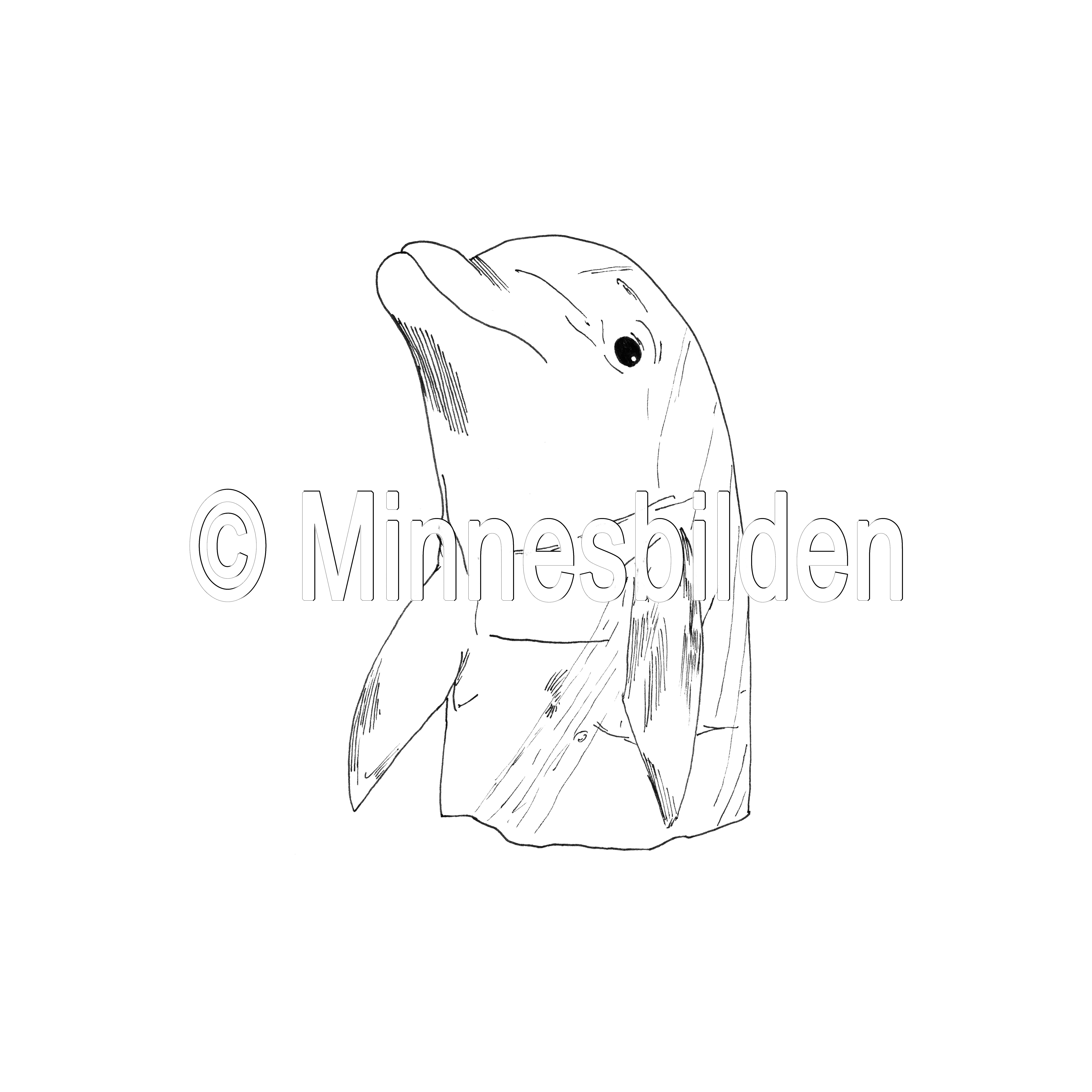 Symbol 292