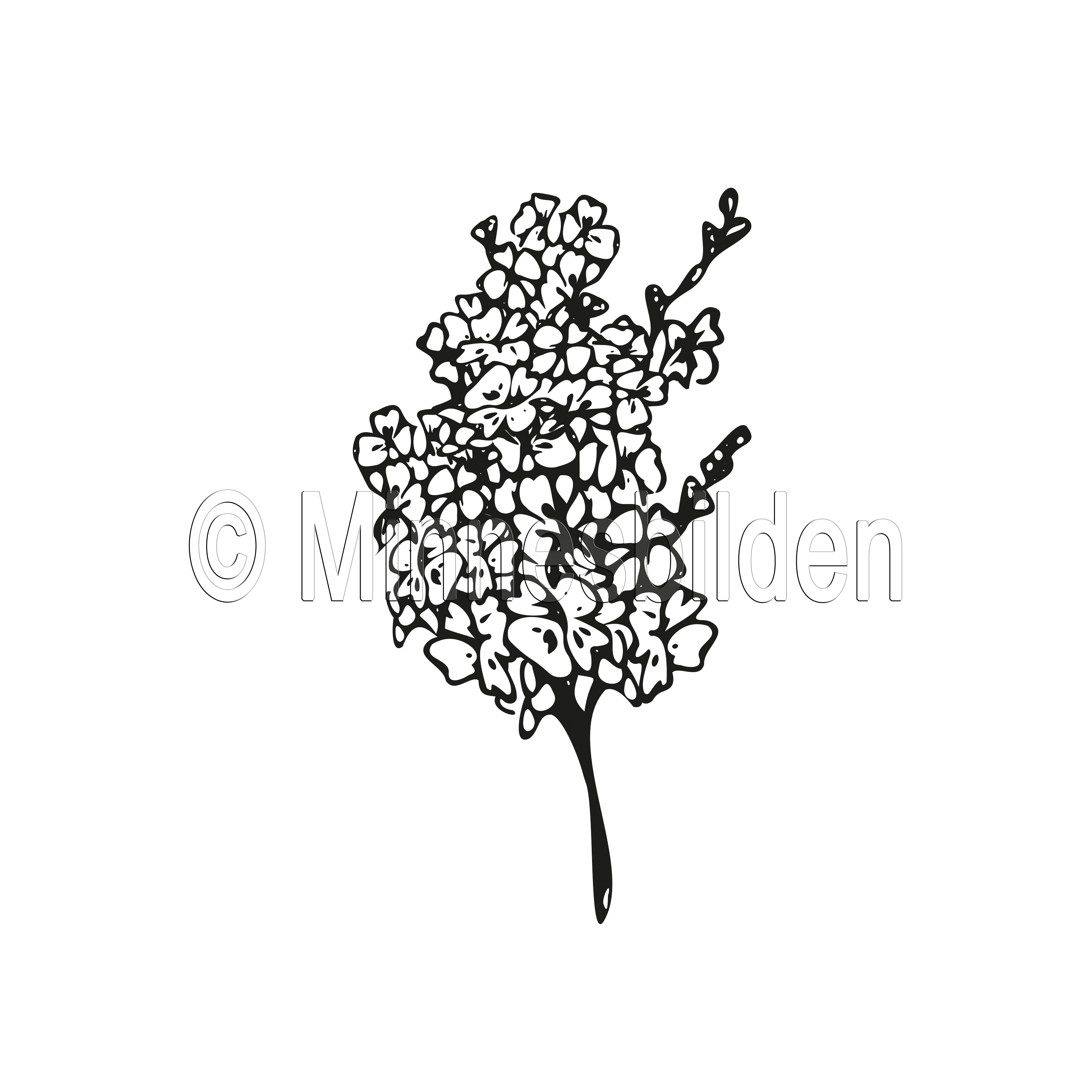 Symbol 56
