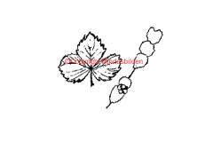 Symbol 208