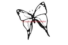 Symbol 251